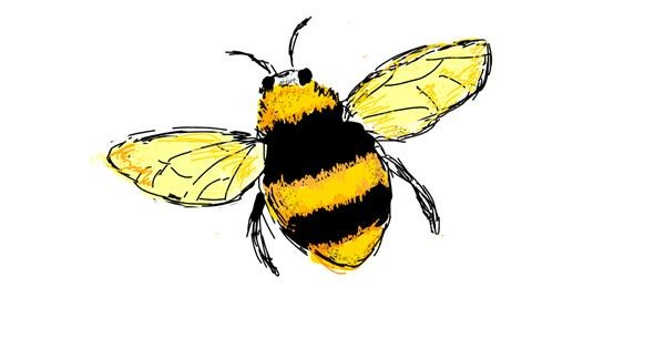 Bee drawing by Lsk