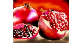 Pomegranate drawing by Zi