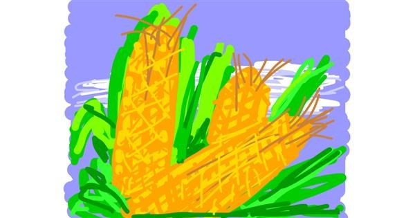 Corn drawing by Firsttry