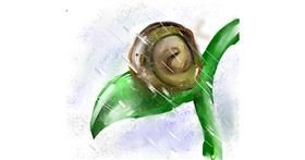 Drawing of Snail by 𝒞𝓊𝓅𝒞𝒶𝓀𝑒