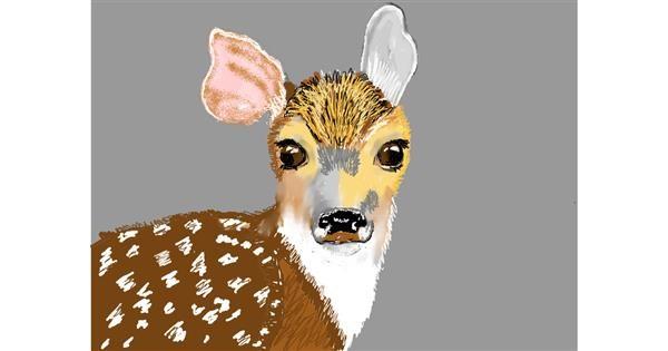 Deer drawing by SAM 🙄
