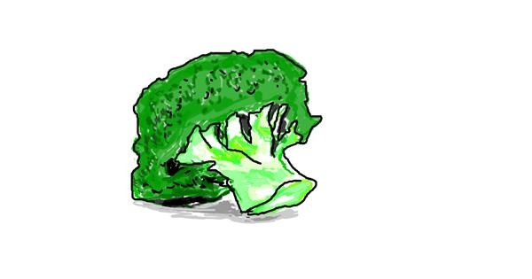 Broccoli drawing by Matteo Fontana