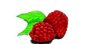 Raspberry drawing by JCat