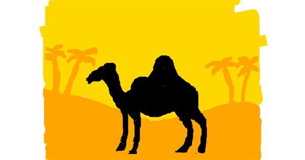 Camel drawing by Anonymous