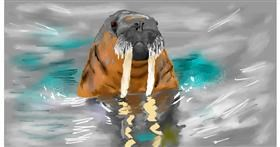 Drawing of Walrus by Effulgent Emerald