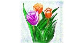 Tulips drawing by Fazila