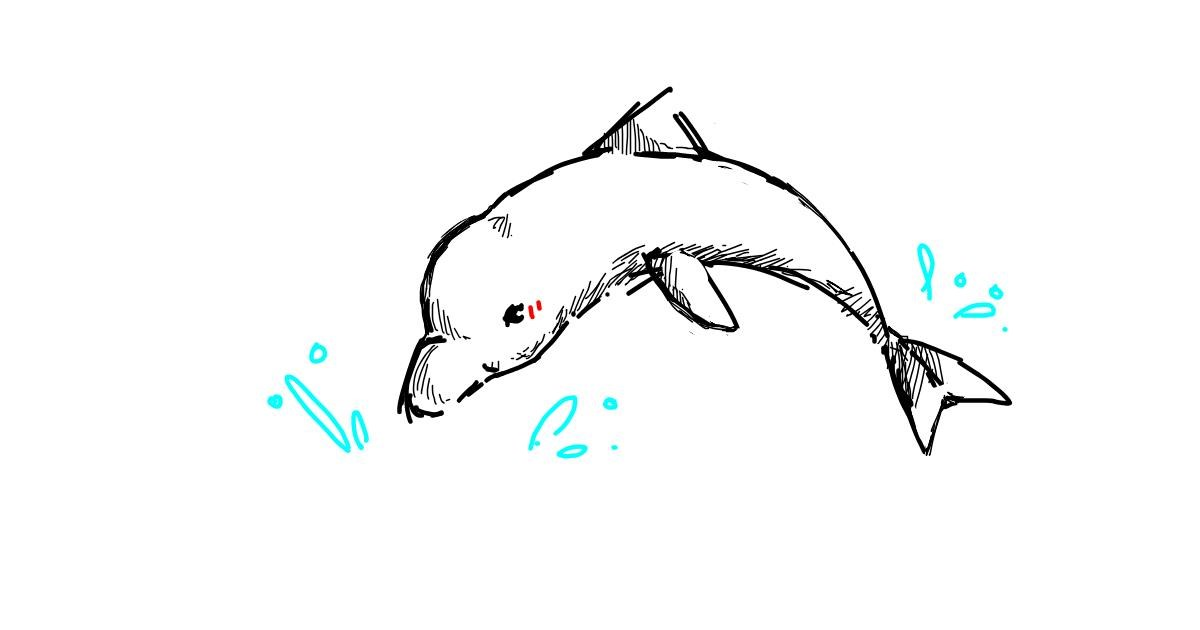 Dolphin drawing by reem
