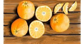 Drawing of Orange by SAM AKA MARGARET 🙄