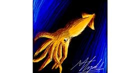 Squid drawing by Marrisa