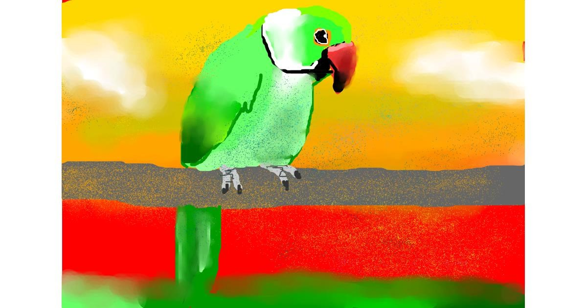 Parrot drawing by The person in your attic