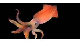 Squid drawing by SiMrA