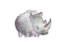 Rhino drawing by coconut