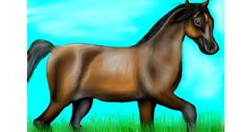 Horse drawing by Jan