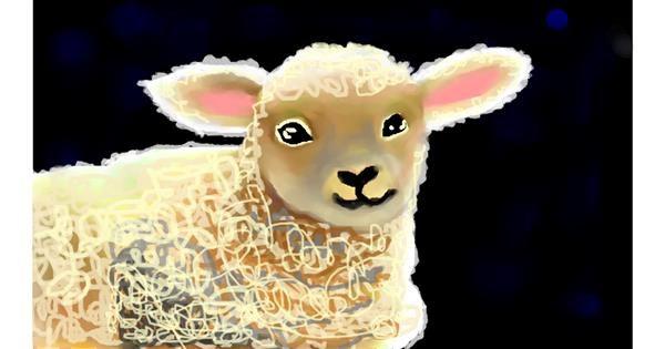 Sheep drawing by Sirak Fish