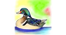 Drawing of Duck by Bishakha