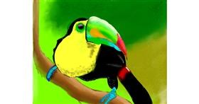 Drawing of Toucan by Yashi 🐢