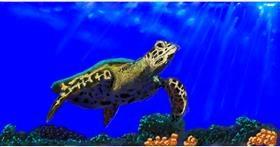 Drawing of Sea turtle by Humo de copal