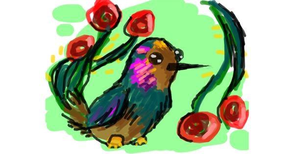 Hummingbird drawing by Nan