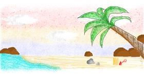 Beach drawing by coconut