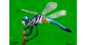 Dragonfly drawing by Banana