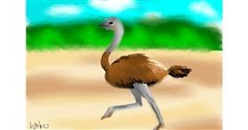 Drawing of Ostrich by Swkieee
