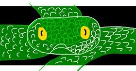 Snake drawing by Destiny