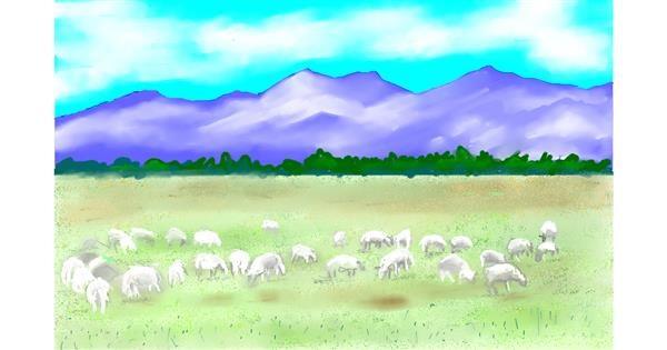 Sheep drawing by GJP