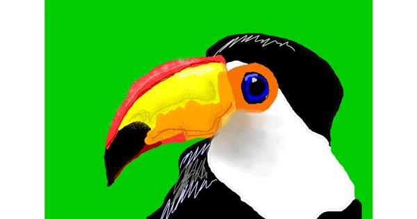 Toucan drawing by 🎼Mia🎶