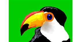 Drawing of Toucan by 🎼Mia🎶