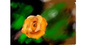 Flower drawing by Akshara