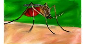 Mosquito drawing by Soaring Sunshine