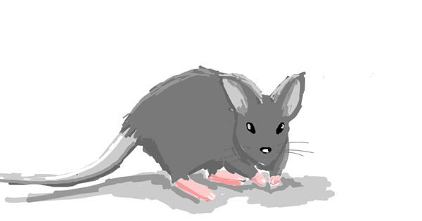 Mouse drawing by itsme