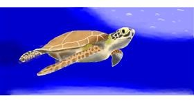 Drawing of Sea turtle by Pinky