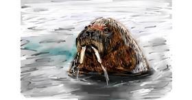 Walrus drawing by Soaring Sunshine