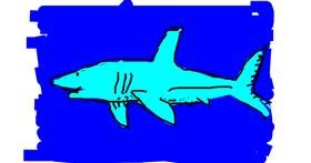 Shark drawing by m