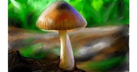 Drawing of Mushroom by Soaring Sunshine