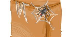 Spider web drawing by Pine