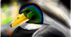 Drawing of Duck by Soaring Sunshine