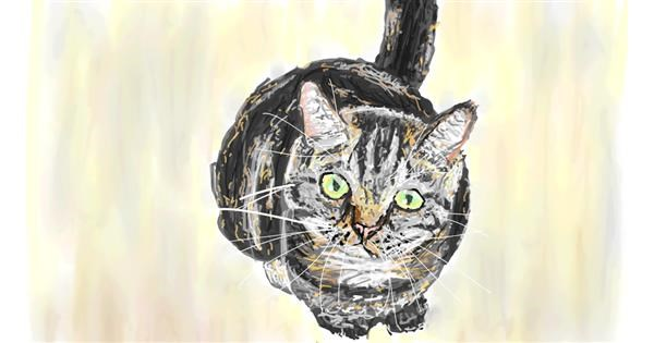 Cat drawing by Sam
