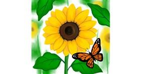 Drawing of Sunflower by Bishakha