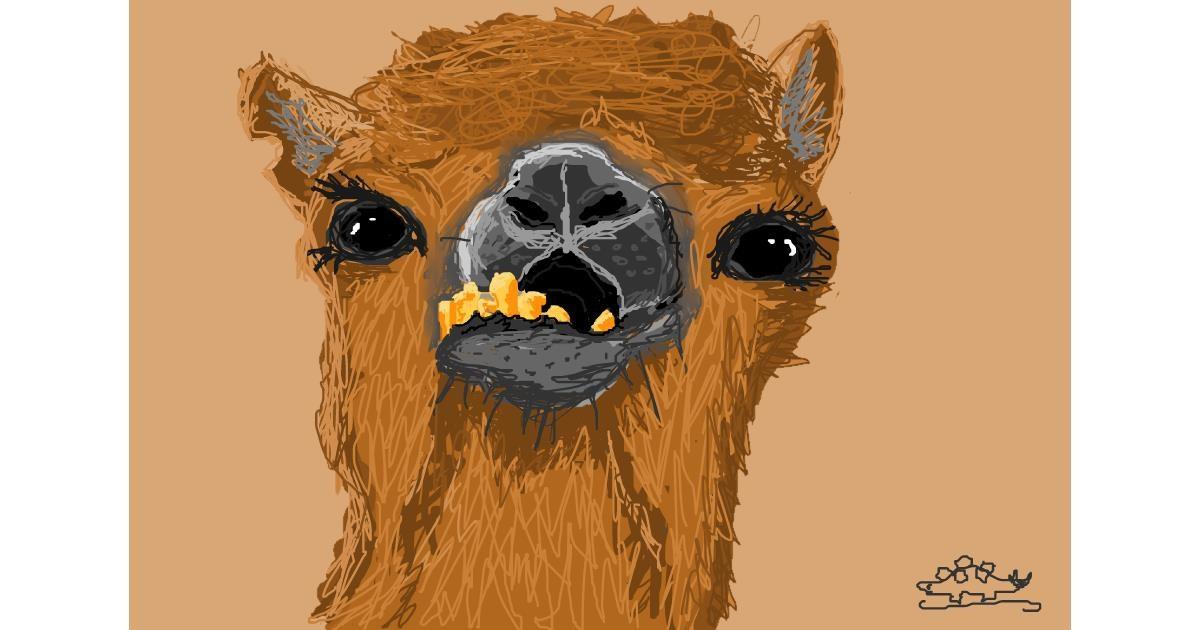 Drawing of Camel by Stegosaurus