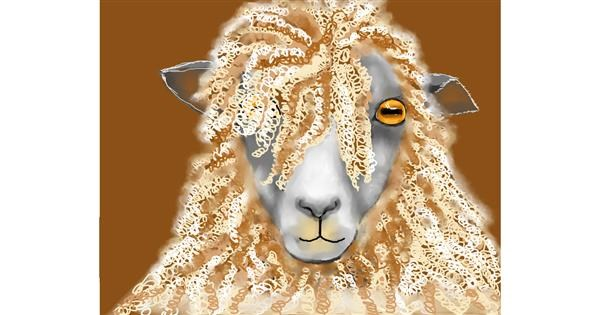 Sheep drawing by Cec