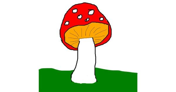 Mushroom drawing by Anonymousssd  sdf sdf sdf sdf