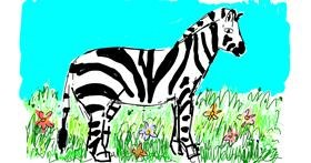 Zebra drawing by Lsk