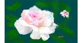 Rose drawing by Kai 🐾