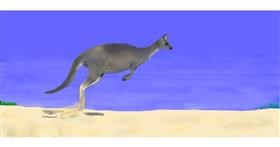 Drawing of Kangaroo by Pinky