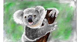Koala drawing by Soaring Sunshine