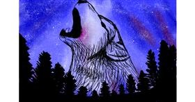 Drawing of Wolf by Percabeth Everlark