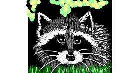Raccoon drawing by Geo-Pebbles