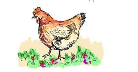 Chicken drawing by Lsk